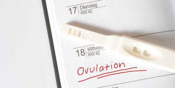 When to Take Ovulation Tests: Reasons for Positive and
